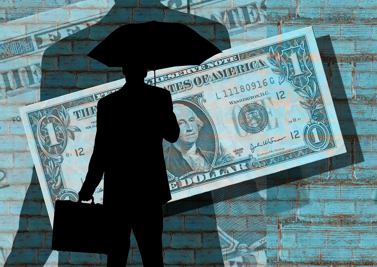 Tax Evasion Schemes