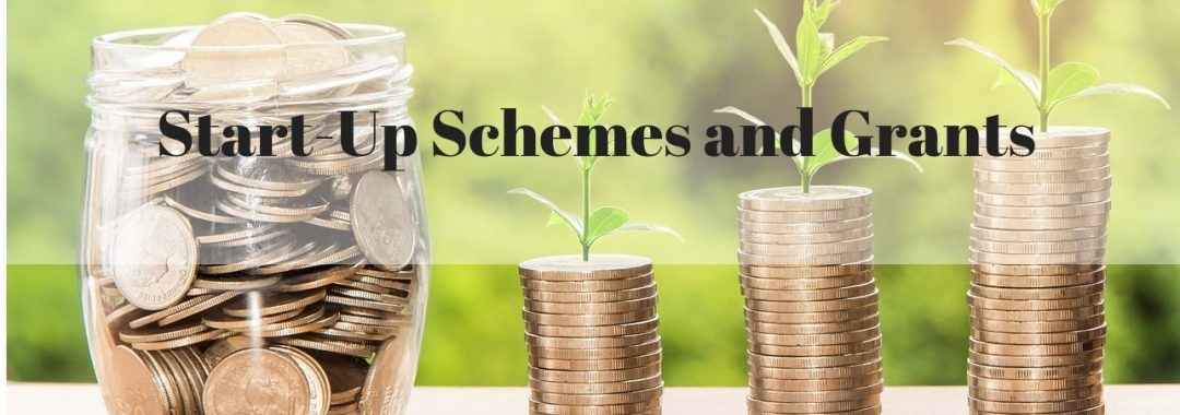 Start-Up Schemes and Grants Singapore