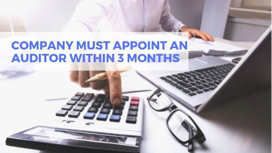 Appoint Company Auditor