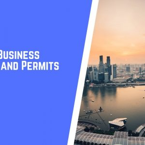 Guide to Business Licenses and Permits in Singapore