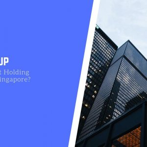 Why Set Up an Investment Holding Company in Singapore?