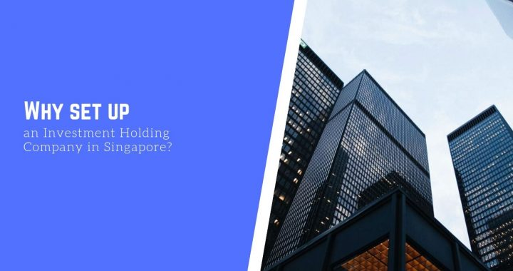 Investment holding company