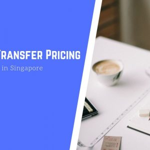 Guide to Transfer Pricing for Businesses in Singapore