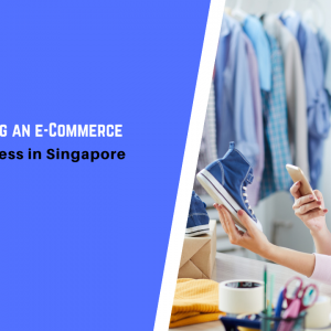 Guide to Starting an e-Commerce or Digital Business in Singapore